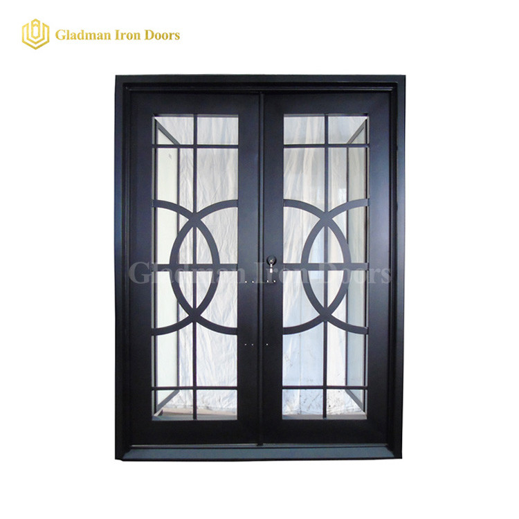 Double Aluminum Storm Doors Design W/ Across Circles