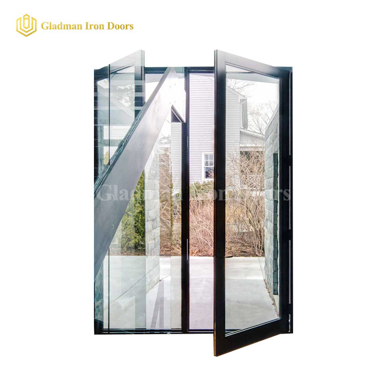 Hot Sales Double Pivot Door With Low-E Tempered Glass /Anti-rusting /Coal-Matte Black/Iron Materials