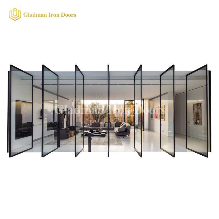 Hot Sales Single Pivot Door With Sidelights /Tempered Clear Glasses /Coal-Matte Black/Iron Materials